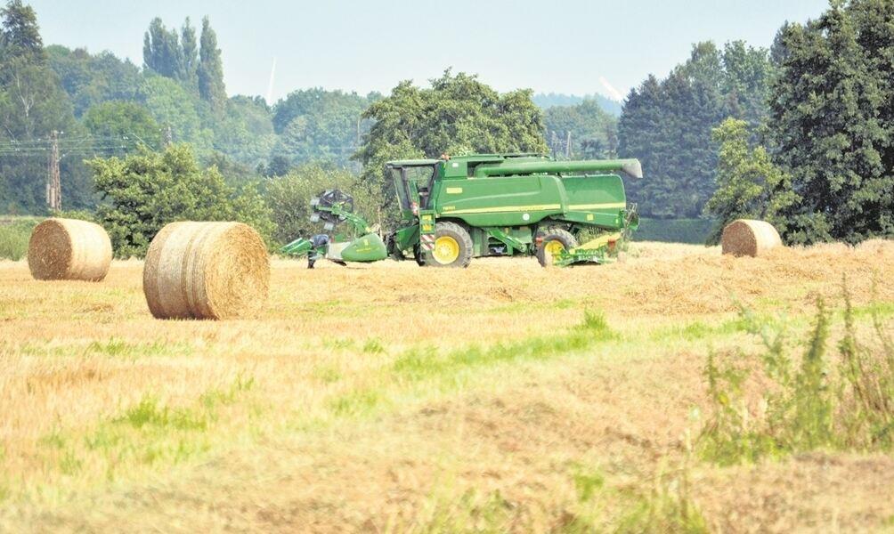 Die Landwirte
